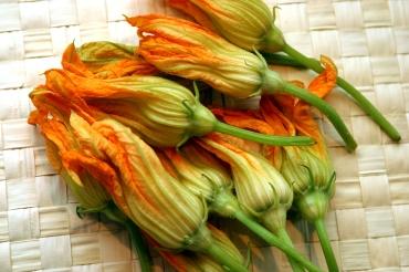 squash-blossoms1